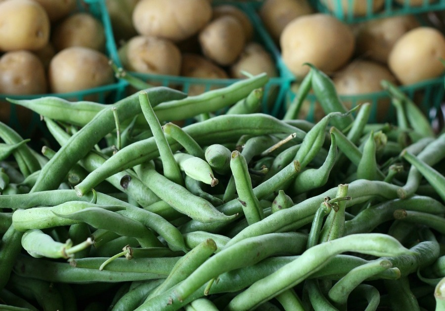 fresh green beans and potatoes