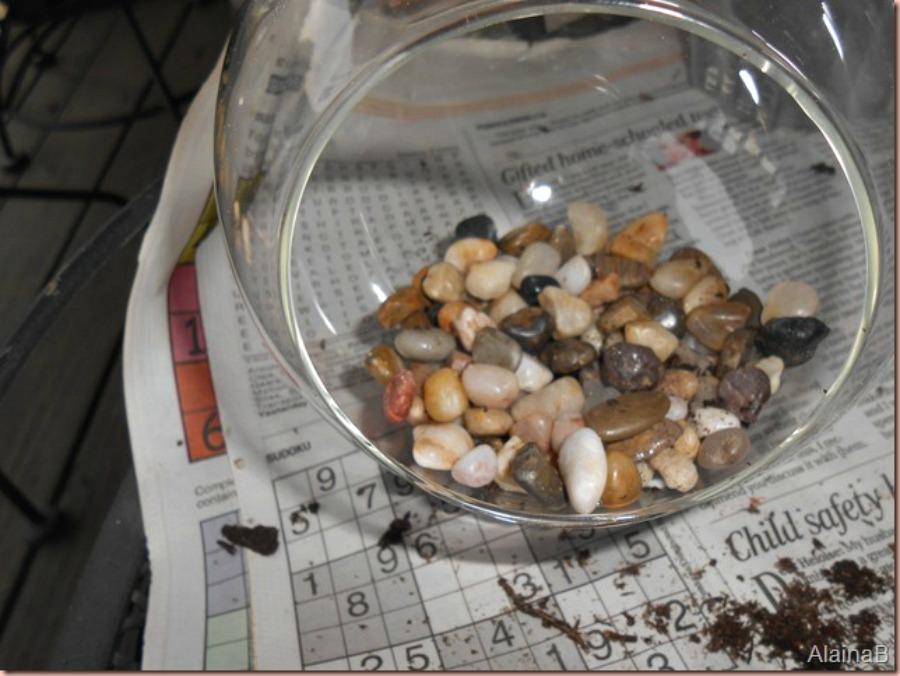 DIY terrarium add rocks for drainage