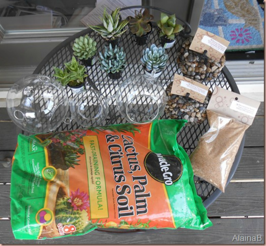 DIY terrarium supplies