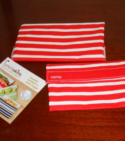 LunchSkins Snack Bag Review & Paperless Kitchen Skoy Cloth Giveaway!