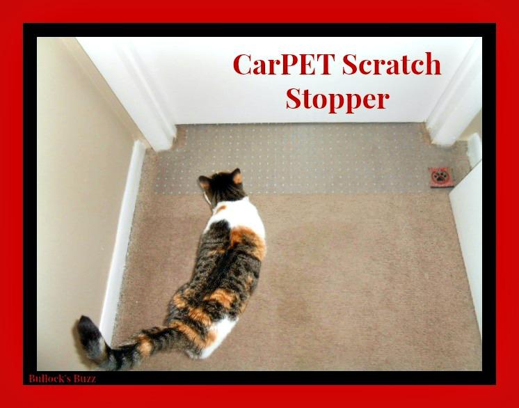 CarPET Scratch Stopper Review4