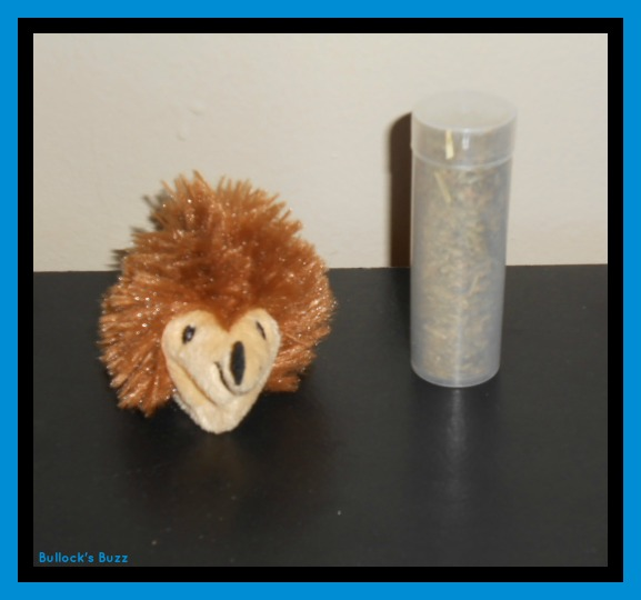 PetBox Review3a Kong Refillable Hedgehog Toy