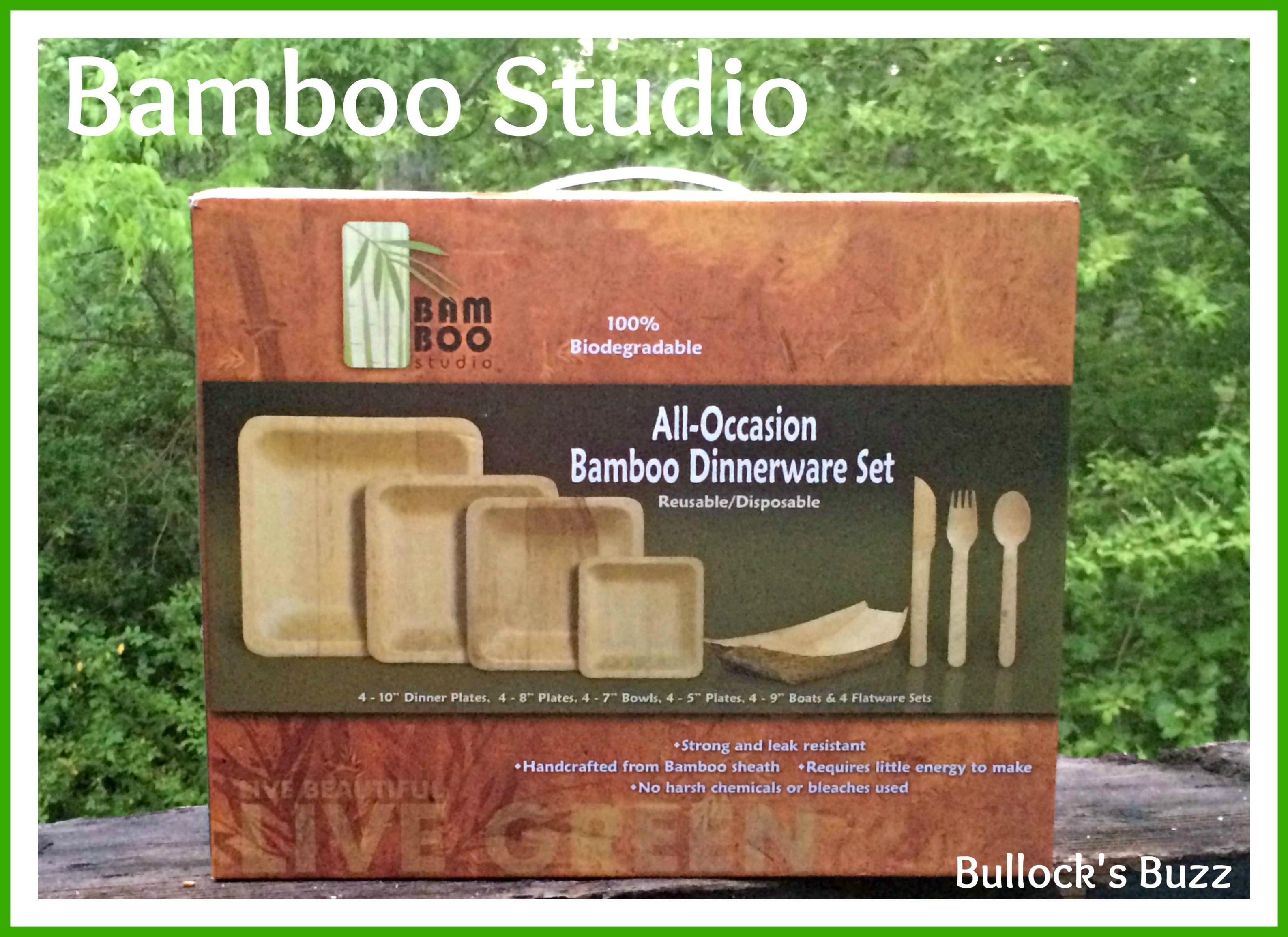 Bamboo Studio Bamboo Dinnerware Set - Stylish and Biodegradable! - Bullocku0027s Buzz & Bamboo Studio: Bamboo Dinnerware Set - Stylish and Biodegradable ...