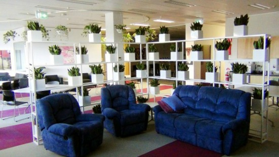 Greenwall-with-Sansevieria-600x337-indoor-plants1