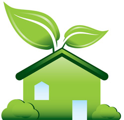 Eco-Friendly Ways to Keep Your Home Safe and Secure