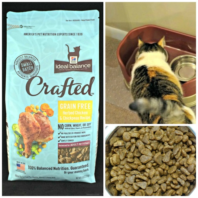 hills crafted pet food featured image