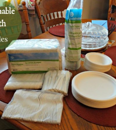 Sustainable Earth by Staples: Eco-friendly Serveware