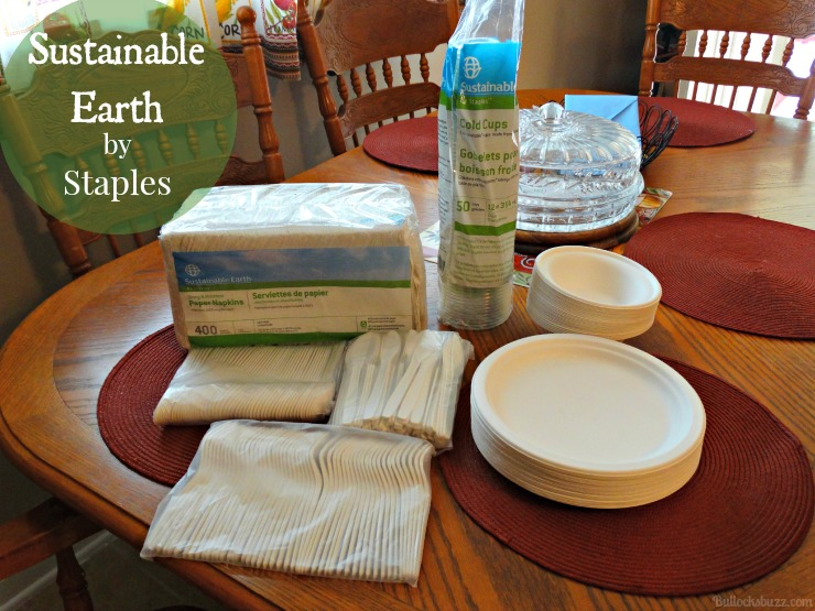 Sustainable Earth by Staples collection