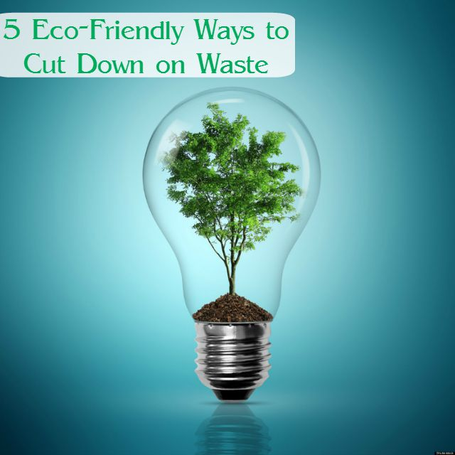 5 Eco-Friendly Ways to Cut Down on Waste