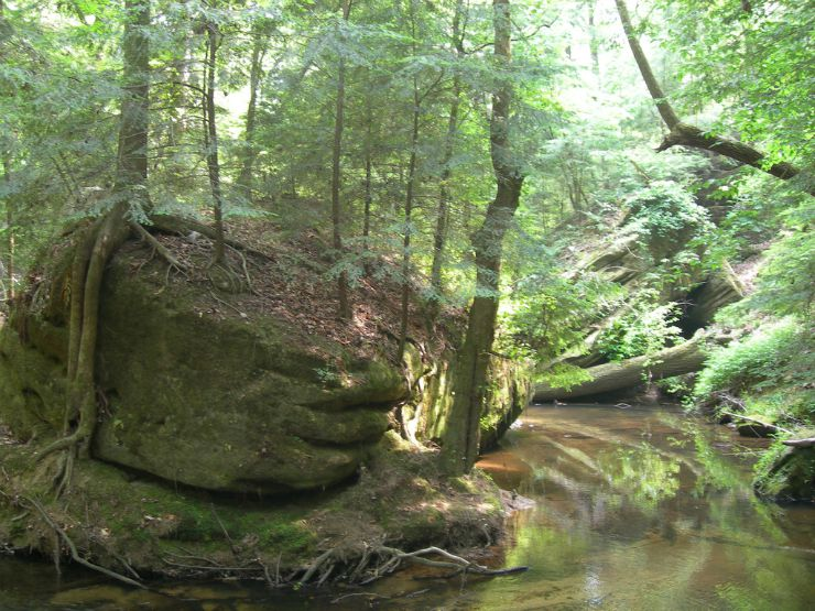 dismals canyon alabama rock and creek by Jimmy Emerson