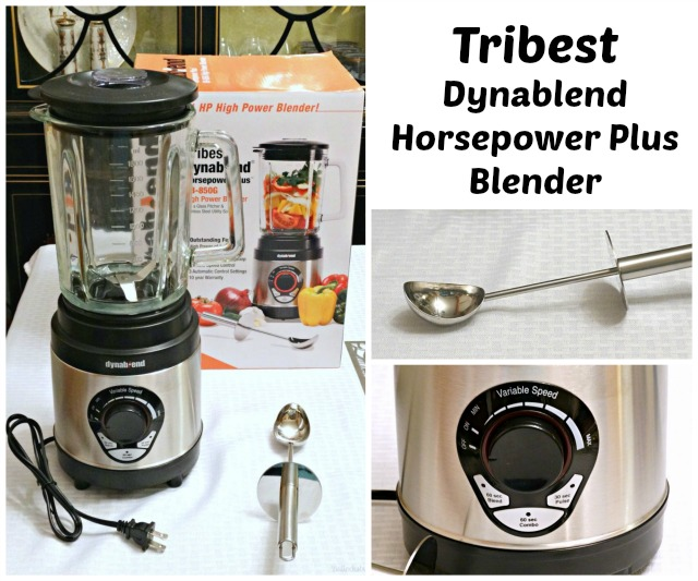 Tribest Dynablend Horsepower Plus Blender: A High Power Blender Without the Cost!