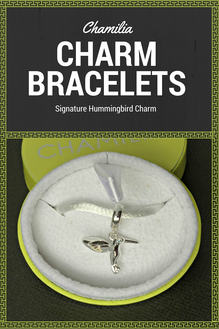 Chamilia charm bracelets and hummingbird charm pin