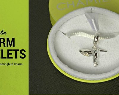 Chamilia Charm Bracelets: The Hummingbird Charm + Giveaway