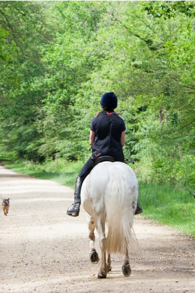 5 Reasons Why You Should Buy Your Daughter A Horse