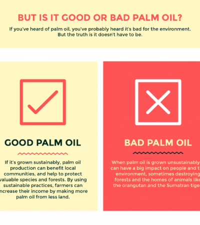 Say YES to Good Palm Oil – What's in the Food You Eat?