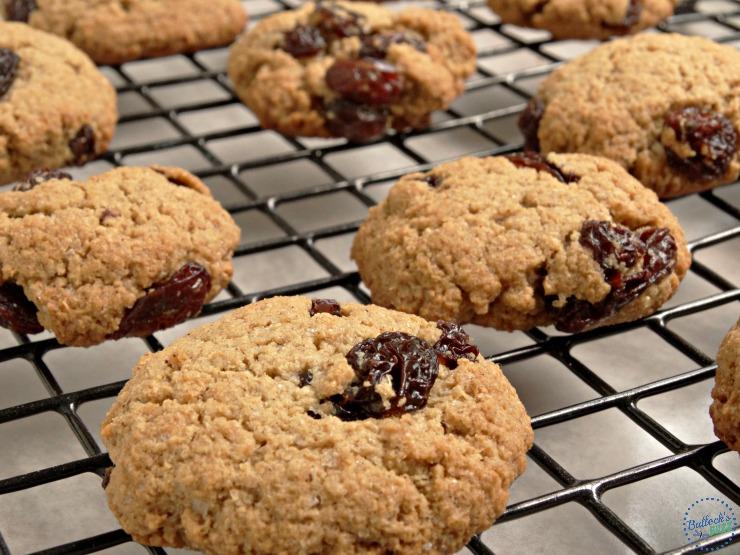 cinnamon raisin oatmeal cookies with gerber cereal image1