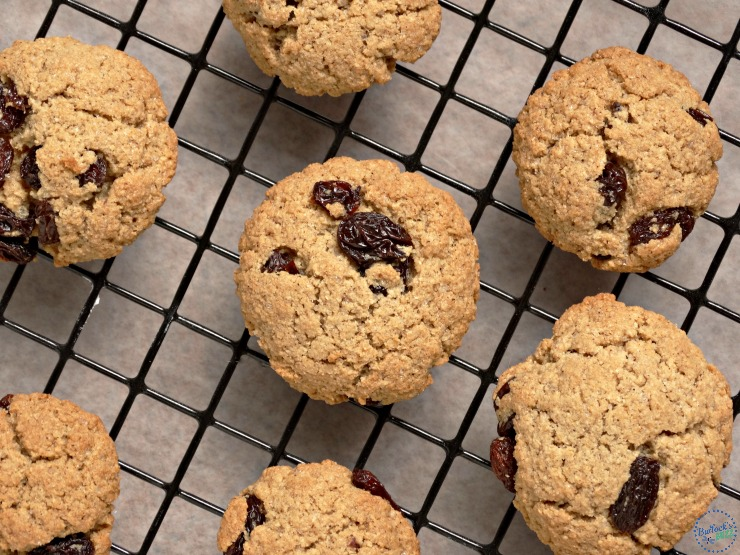 cinnamon raisin oatmeal cookies with gerber cereal image3