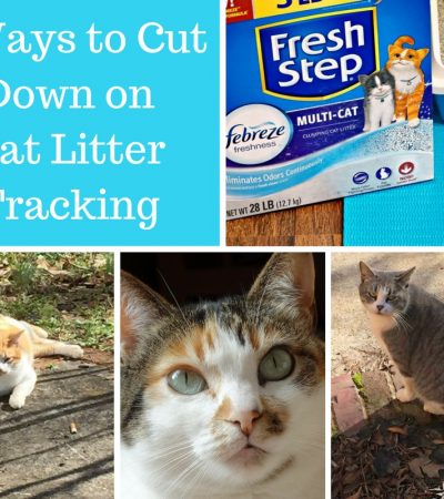 6 Simple Ways to Cut Down on Cat Litter Tracking #FreshStepFebreze