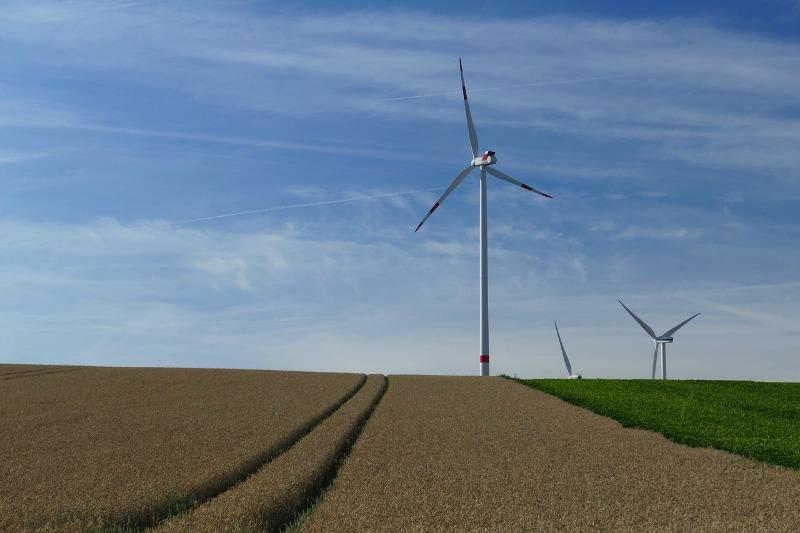 the-season-of-green-reasons-to-go-eco-friendly-this-autumn-main
