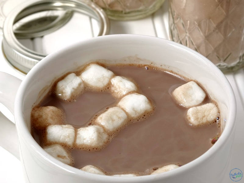 homemade-hot-chocolate-mix-in cup