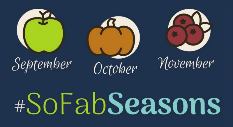 pumpkin recipes and crafts roundup sofabseasons