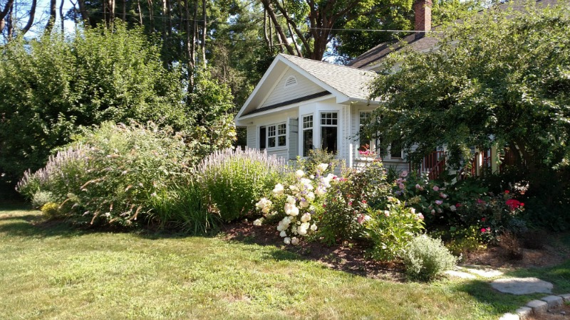 Get Your House in Shape This Winter clean yard