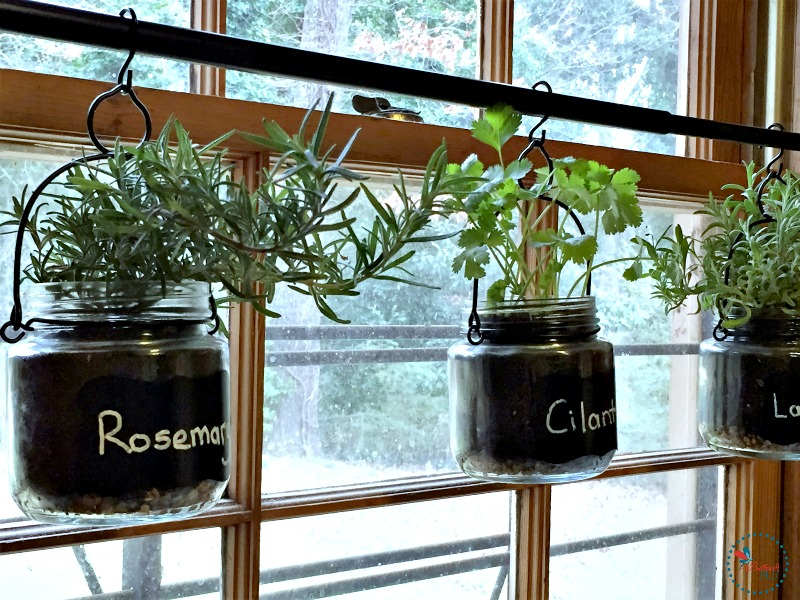 diy indoor hanging herb garden hang on rod and finished - Hanging Herb Garden