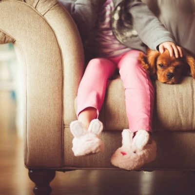 Kids And Animals – Keeping Your Little Ones Safe