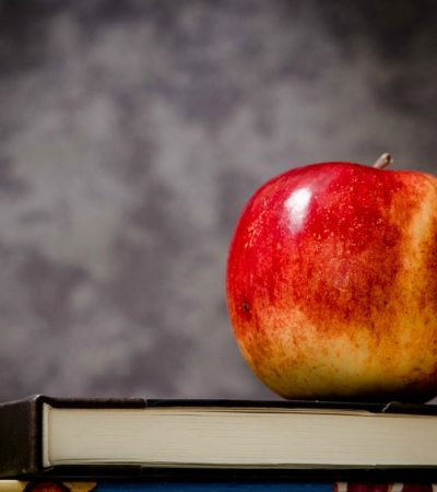 How Can I Optimize My Child's Education?