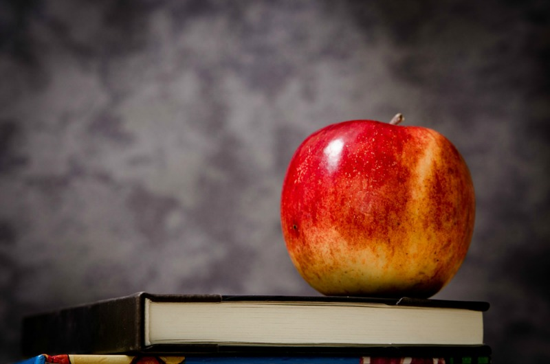 how can I optimize my child's education
