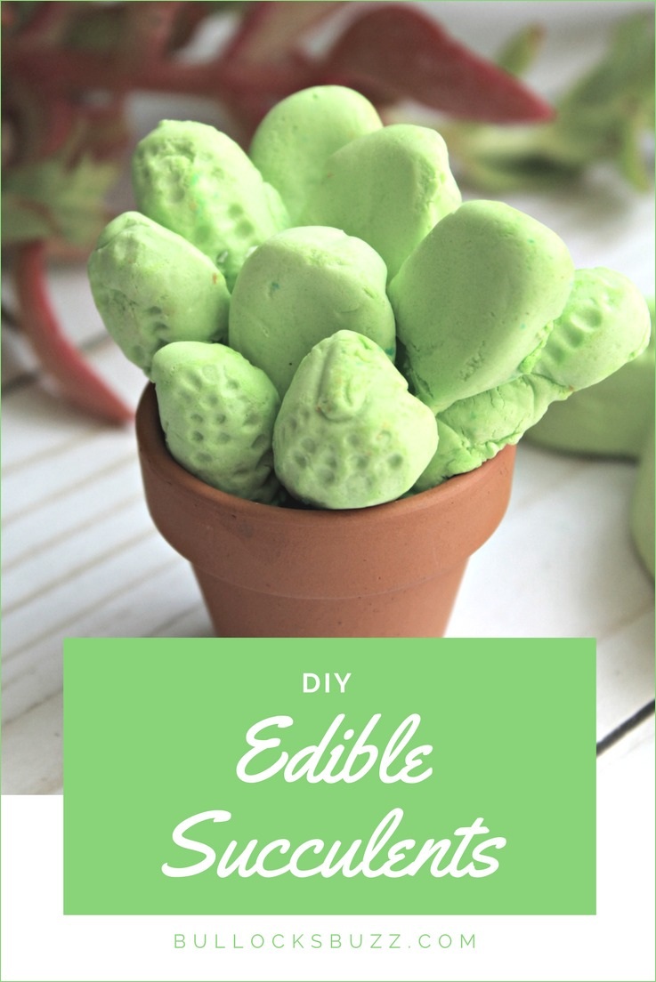 Feast your eyes on these super cool, super yummy edible succulents! Made with Circus Peanuts from the dollar store, this fun Spring-themed edible craft is easy and affordable!