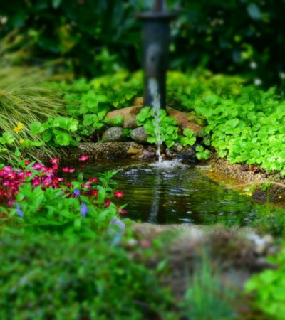 Garden Accessories: Three Things That Will Help You Keep On Top Of Your Garden