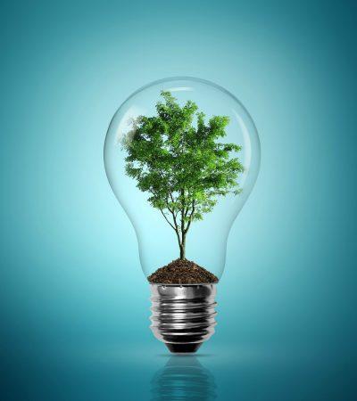 Secret Environmental Dangers Around Your Home