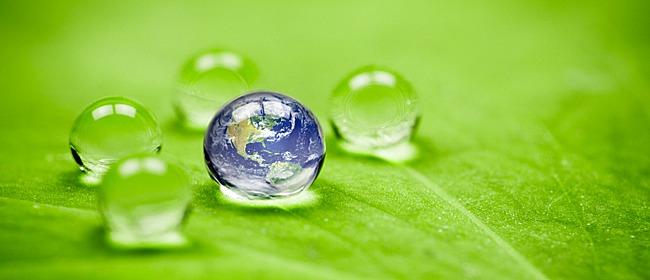 Secret Environmental Dangers Around Your Home main image