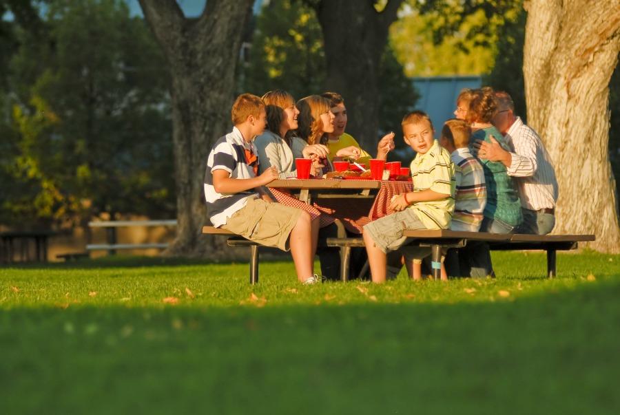 picnic in the park Box Elder County