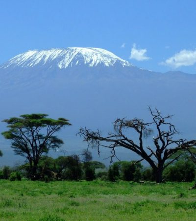 Find Your Next Adventure with Mojhi – Climbing Kilimanjaro