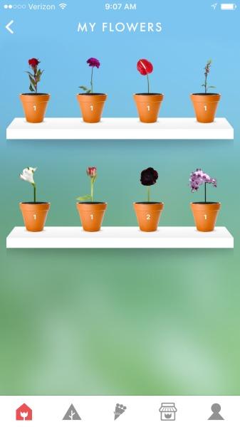 flowerling app greenhouse