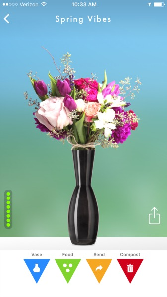 flowerling app my flowers in a vase
