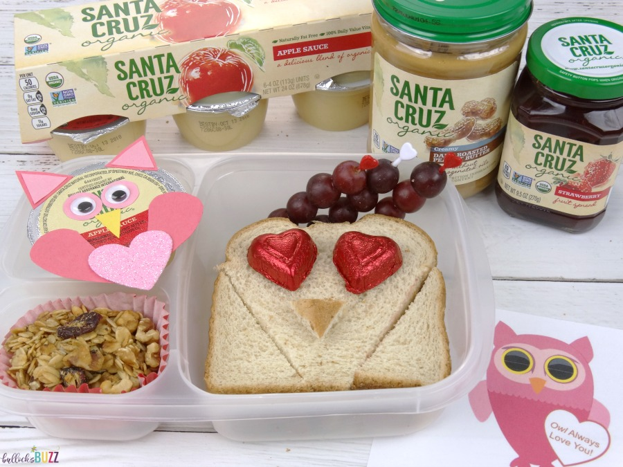 Valentine's Day Lunch for Kids owl themed lunch