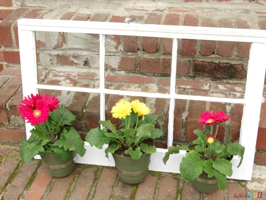 front view of DIY Upcycled Window Flower Planter