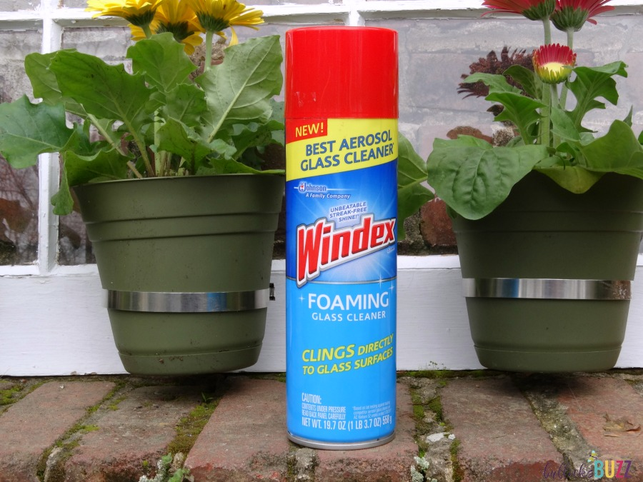 Windex Foaming Cleaner in front of DIY Upcycled Window Flower Planter