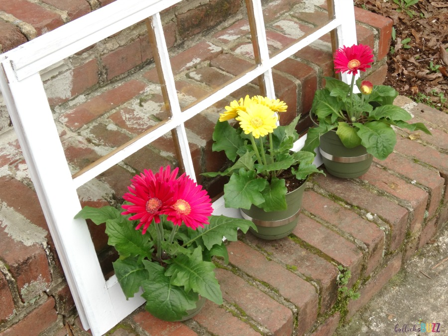 DIY Upcycled Window Flower Planter side view