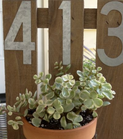 DIY House Number Wall Planter – A Chic and Fun Craft!