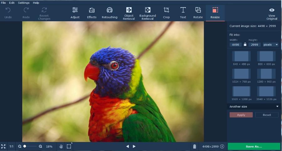 Adding Text to Photos Using Movavi Photo Editor
