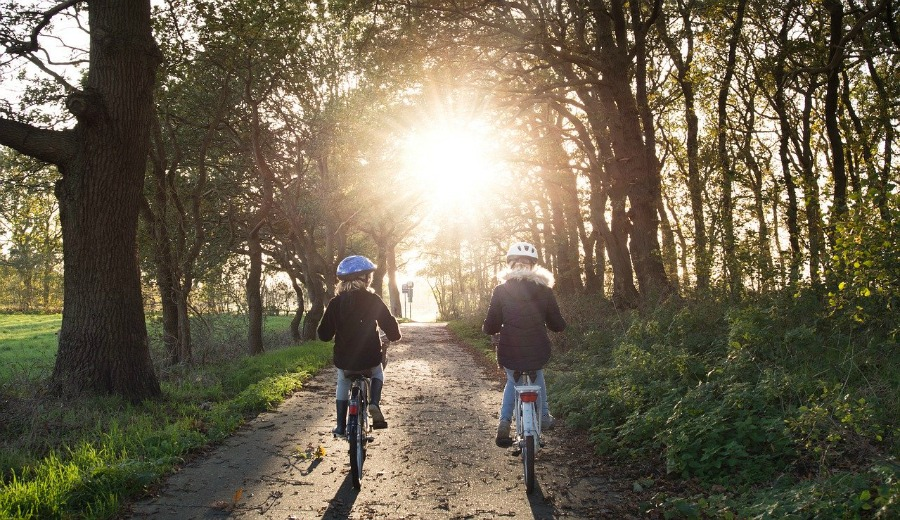 biking in the woods an environmental benefits of biking
