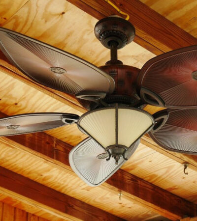ceiling fans can help you save energy consumption in summer