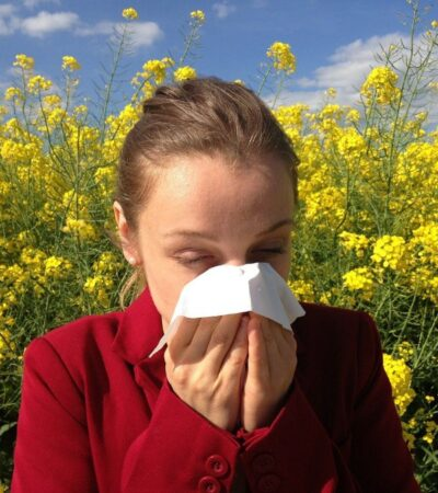 pollen allergy cleaning tips for allergy sufferers
