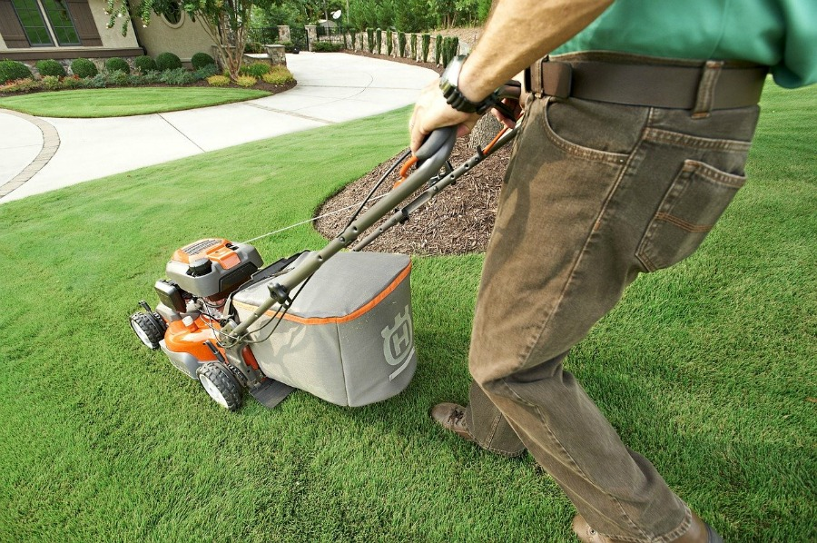 another way of getting rid of a lawn full of weeds is to regularly mow