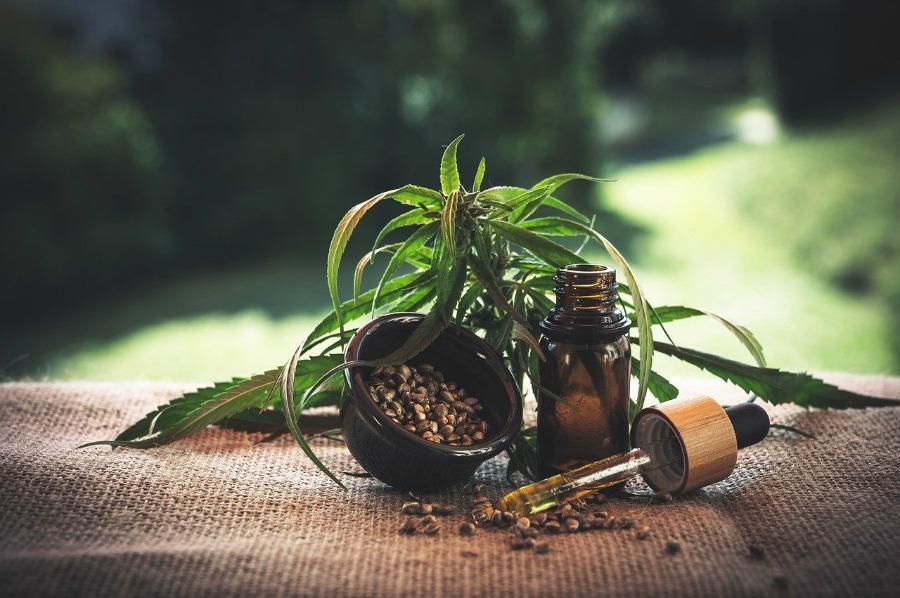 hemp leaves and cbd oil is cbd safe around kids