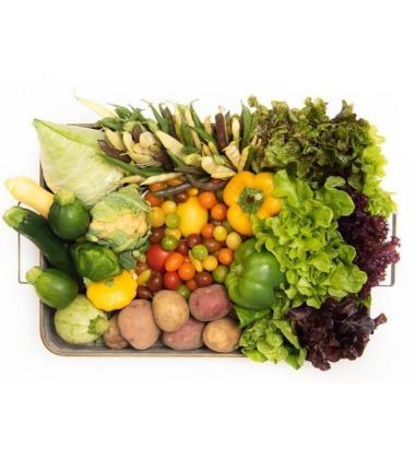 The Chef's Garden fresh veggies box